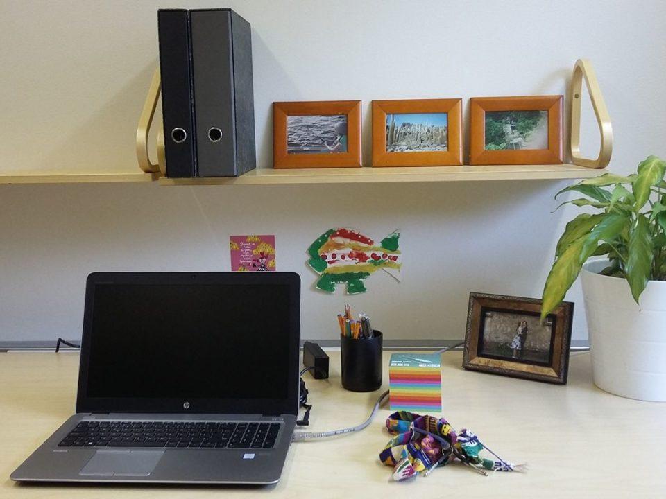 työpöytä tietokone huonekasvi valokuvia