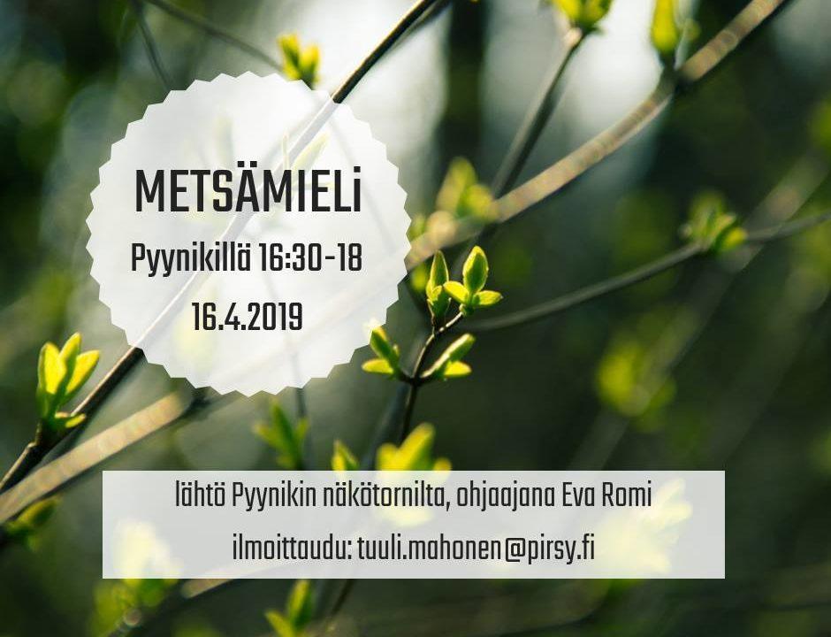 [Tampere] Metsämieli-ohjaus Pyynikillä