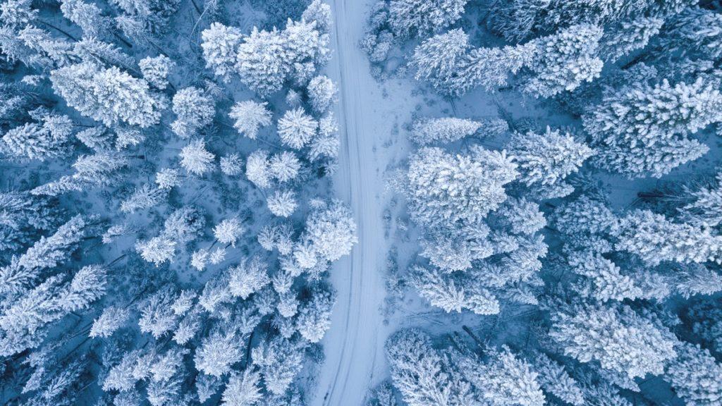 luminen metsämaisema ja tie ylhäältä kuvattuna