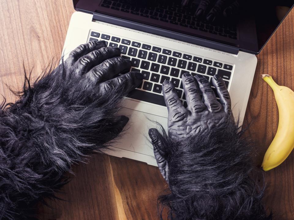 simpanssin kädet läppärin näppäimistöllä, vieressä banaani