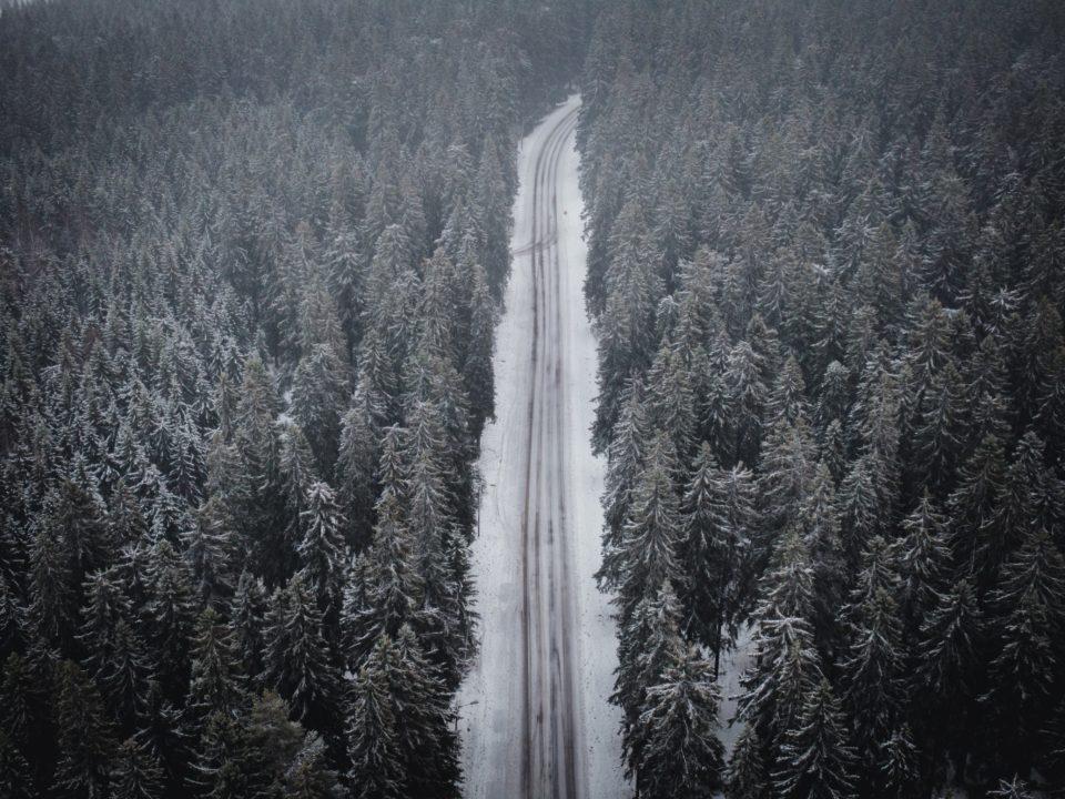 Maisema, jossa tie ja metsää lapissa.
