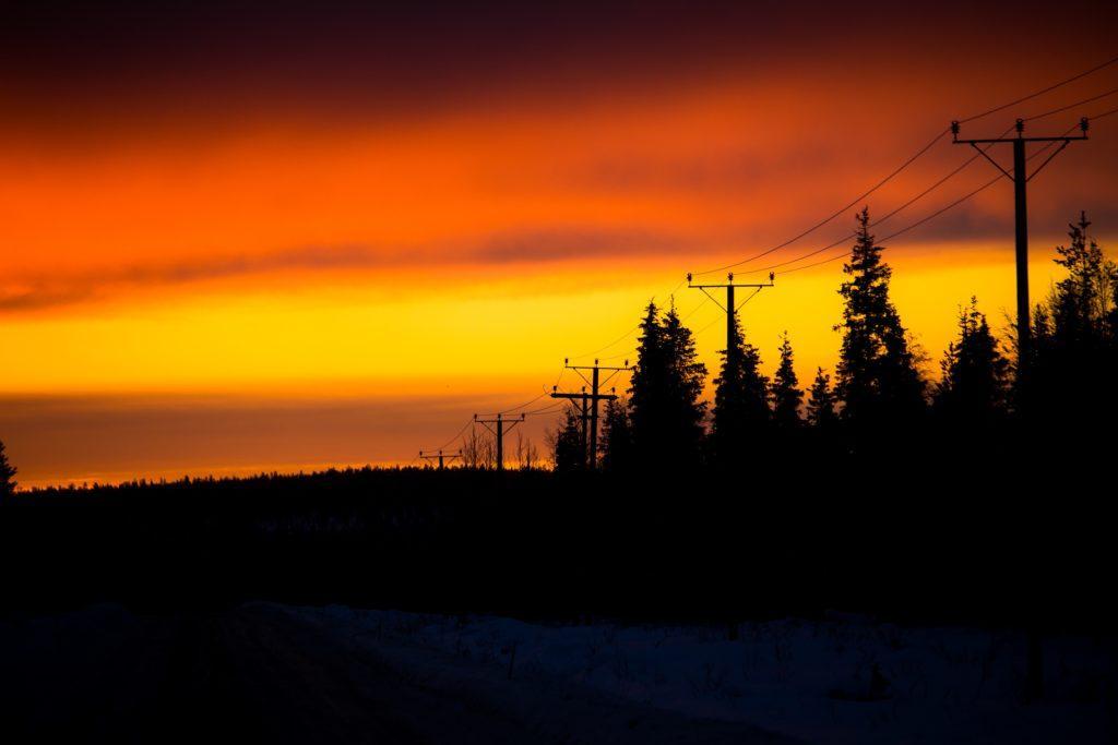 Maisema. Metsä ja auringonlasku.